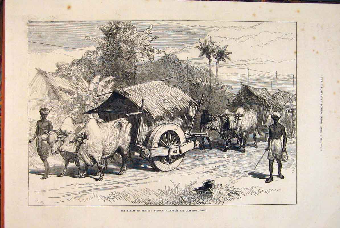 Print Famine Bengal India Bullock Grain Hackeries 1874 16Maa0 Old Original
