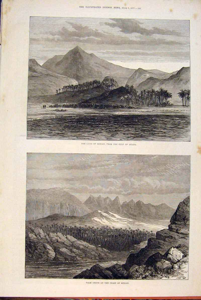 Print Midian Gulf Akaba Palm Grove Coast Sketch 1877 49Maa0 Old Original