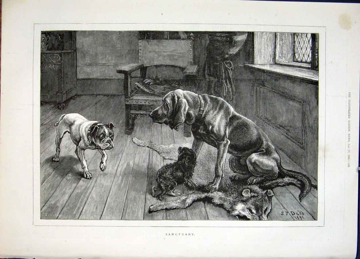 Print Sanctuary Dadd Dog Dogs Hound 1883 10Maa0 Old Original