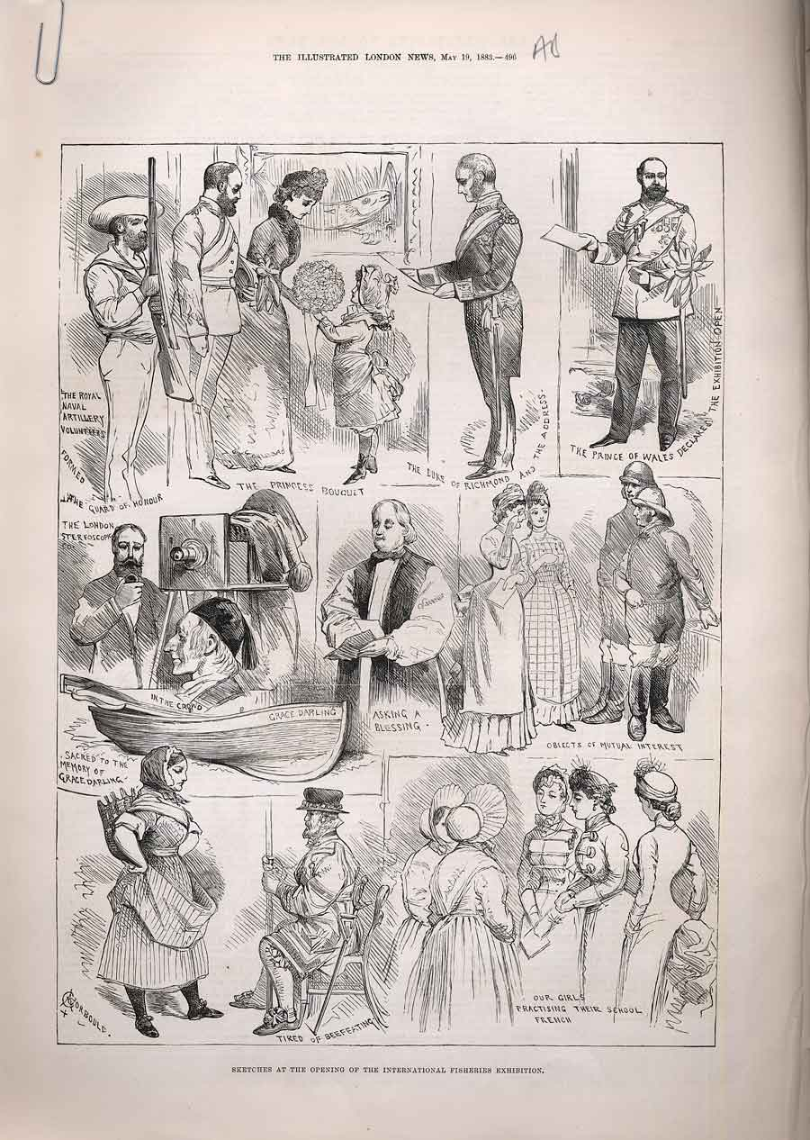 Print Sketches International Fisheries Exhibition Fish 1883 96Amaa0 Old Original