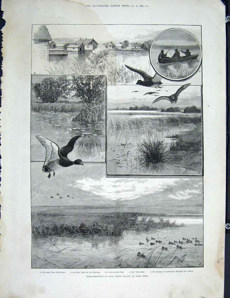Print Duck Shooting Long Point Island Lake Eire 1889 09Maa0 Old Original