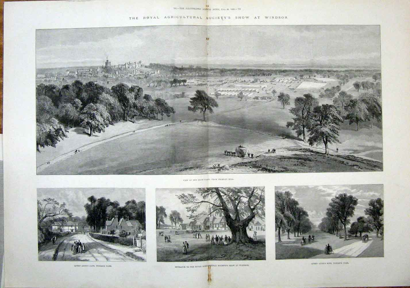 Print Windsor Royal Society Agricultural Show Park 1889 91Tmaa0 Old Original