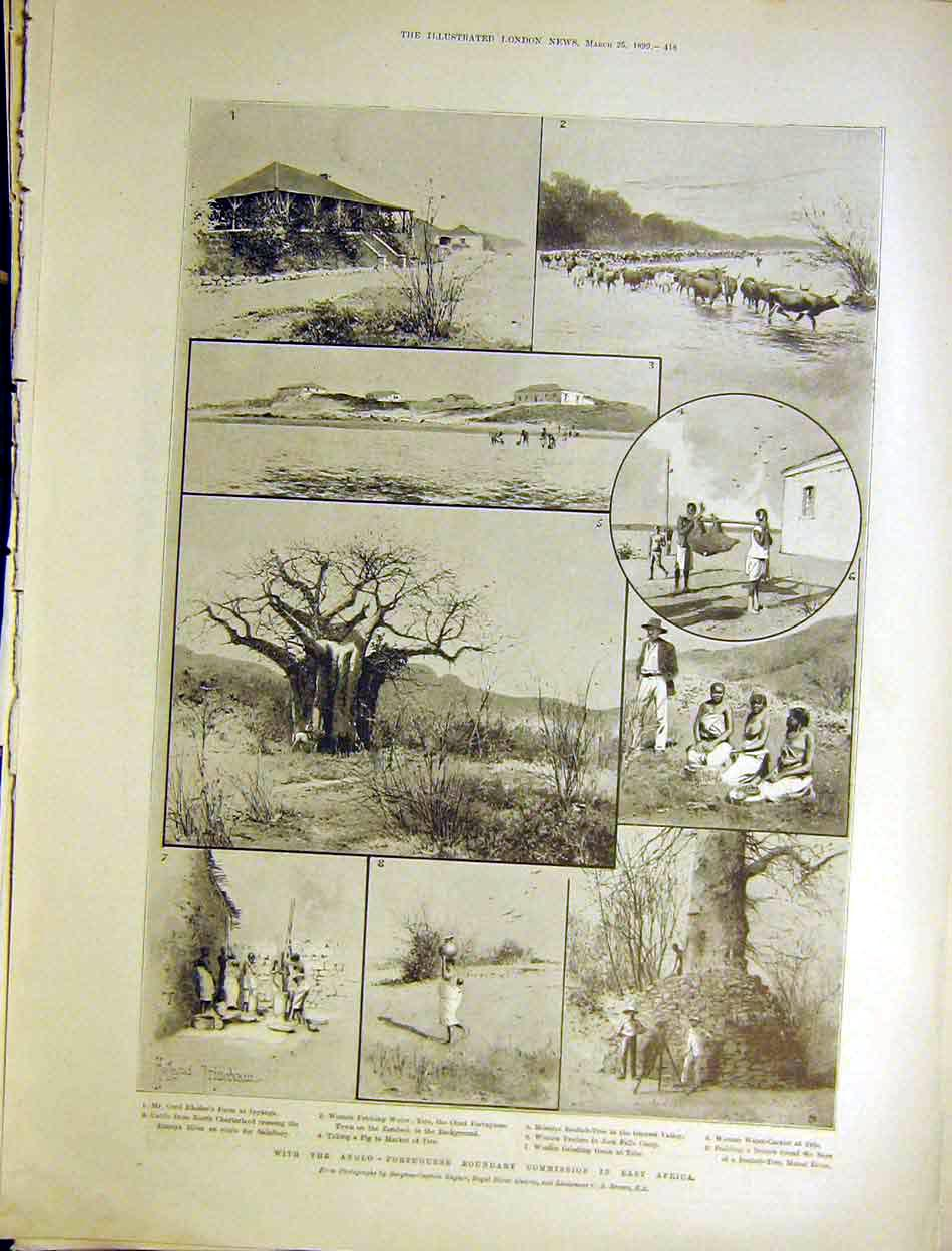 Print Anglo-Portuguese Boundary Africa Rhodes Baobab 1899 18Maa0 Old Original