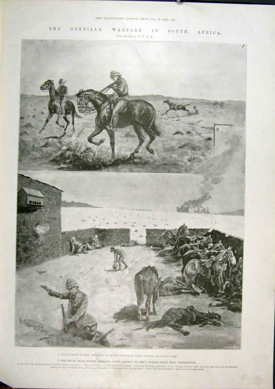 Print Infantry Irish Horses Guerilla War Africa 1901 69Maa0 Old Original