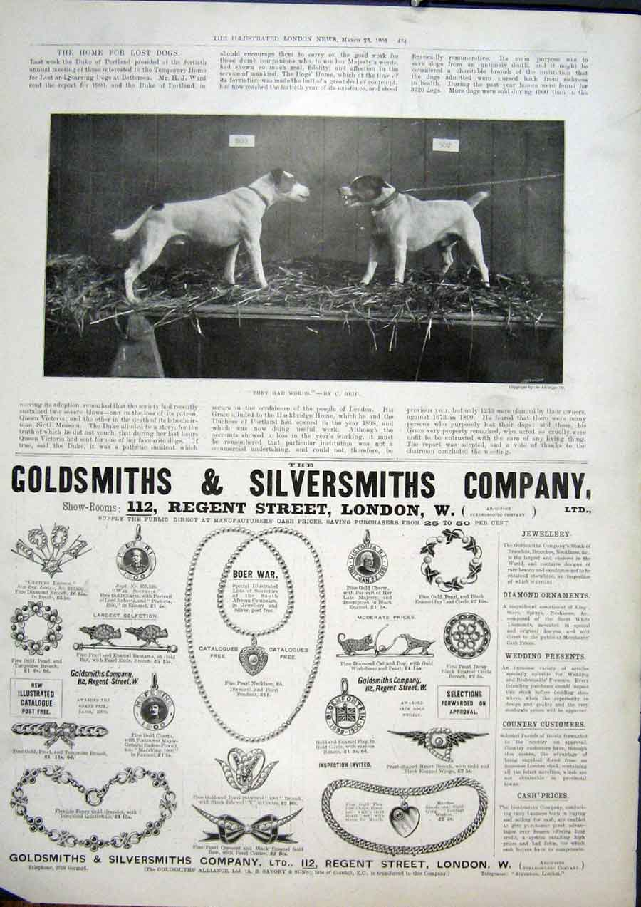Print Dogs Fight Words Reid Fine Art 1901 Advert Jewellery 34Maa0 Old Original