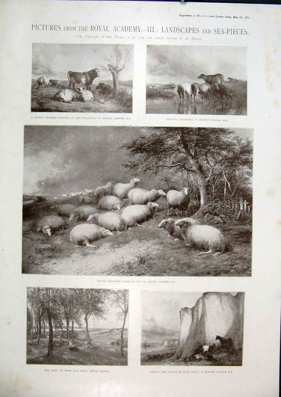 Print Pictures Royal Academy Landscape Sea Animals Art 91Amaa0 Old Original