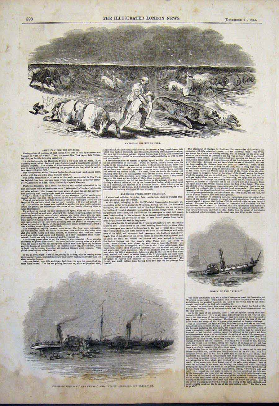 Print American Prairie Fire America Orwell Sylph Steamers Sea 88Maa1 Old Original