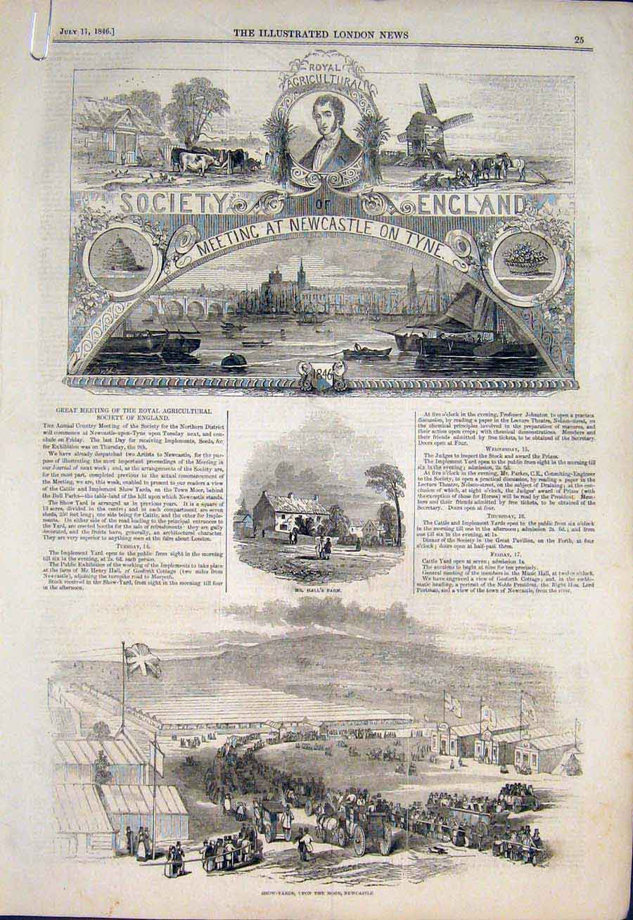 Print Royal Agricultural Society Newcastle On Tyne Cattle 25Amaa1 Old Original