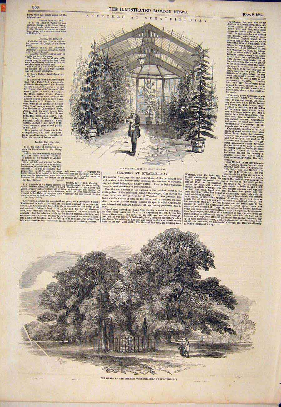 Print Stratfieldsay Sketches Conservatory Copehagen Grave 08Maa1 Old Original