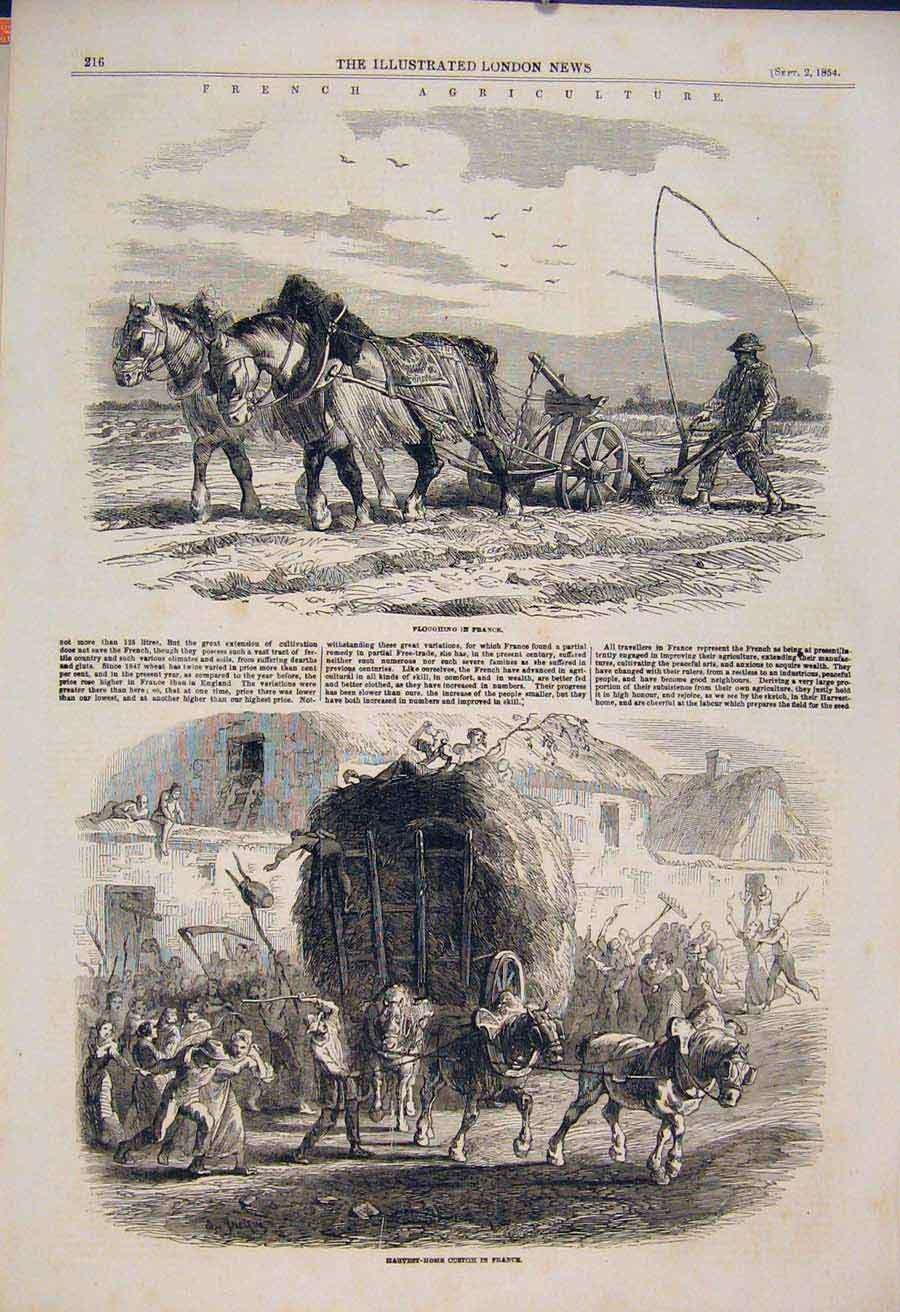 Print French Agriculture Farm Farmer Plough France Harvest 16Maa1 Old Original