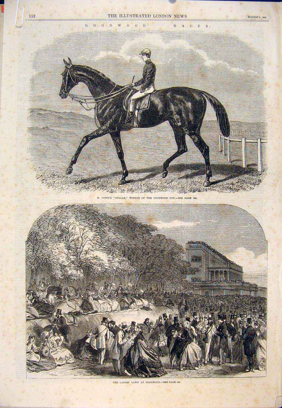 Print Goodwood Races Race Horse Lupin Dollar Ladies Racehorse 52Amaa1 Old Original