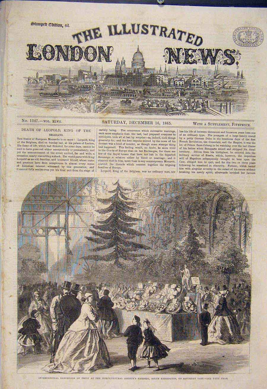 Print International Exhibition Fruit Horticultural Gardens 74Maa1 Old Original