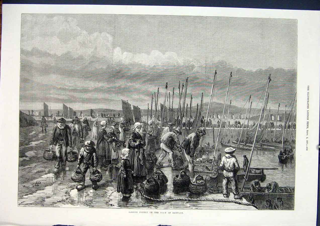 Print Sardine Fishery Brittany France Fish 1871 16Maa1 Old Original