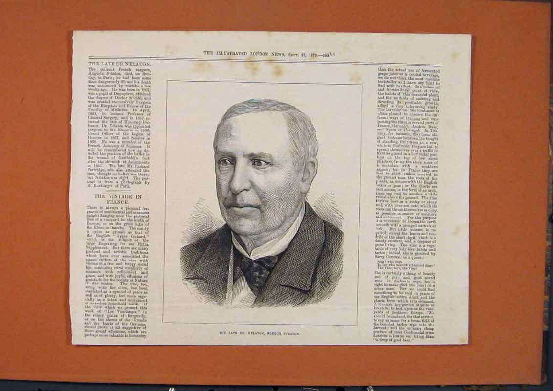 Print Portrait Dr Nelaton French Surgeon 1873 93Umaa1 Old Original