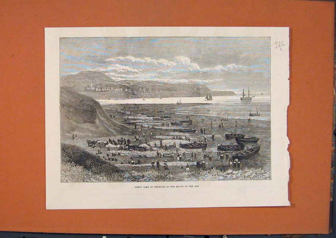 Print Exe Herrings Fish Fishermen Boats Beach 1873 26Lmaa1 Old Original