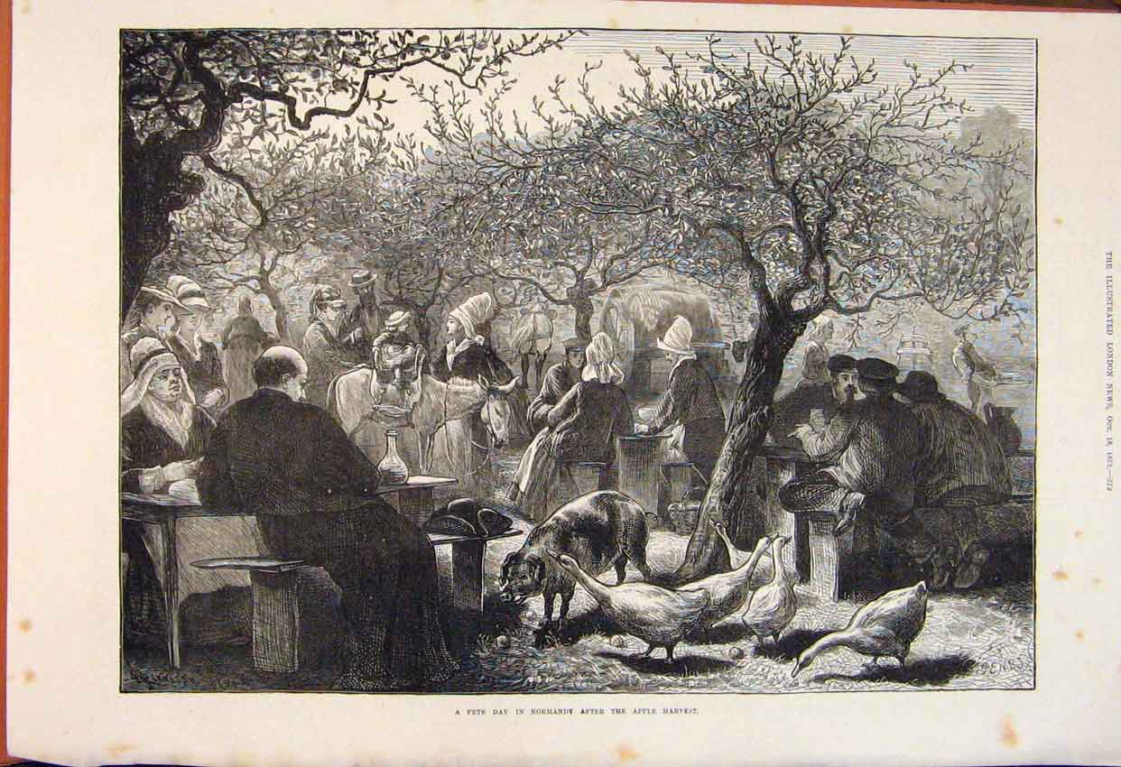 Print Fete Day Normandy Apple Harvest Geese Pigs Orchard 1873 72Maa1 Old Original