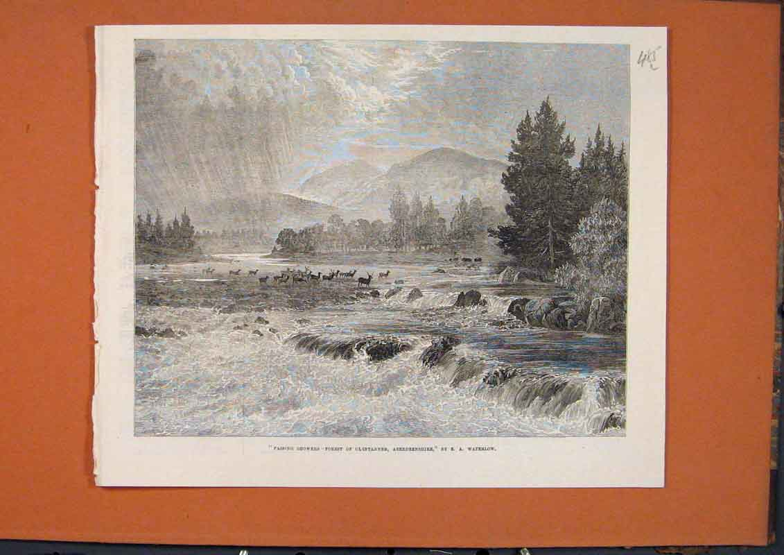 Print Waterlow Forest Glentanner Aberdeenshire Scotland 1873 85Lmaa1 Old Original
