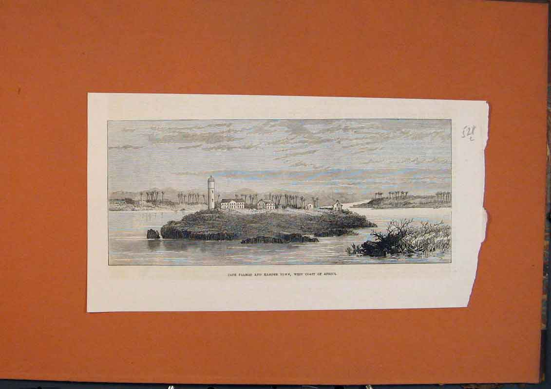 Print Cape Palms Harper Town Africa West Coast 1873 28Lmaa1 Old Original