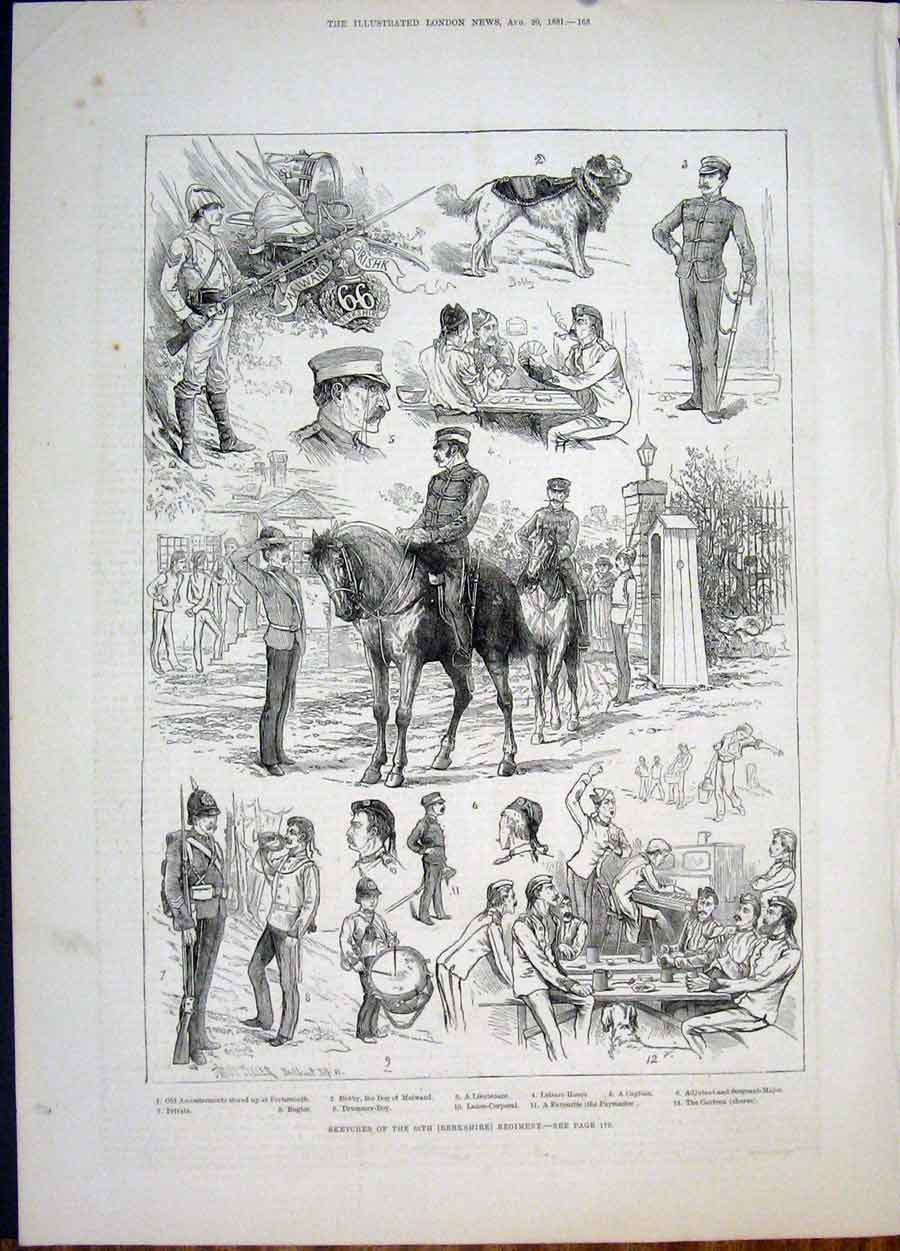 Print Berkshire Regiment Sketch 66Th Dog 1881 68Maa1 Old Original