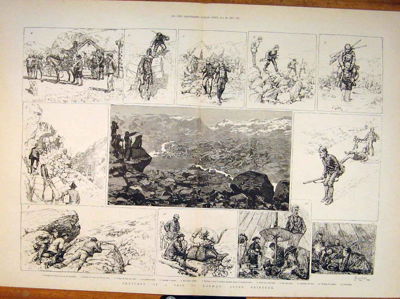 Print Norway Reindeer Hunt Hunting Shooting Norwegian 1885 11Tmaa1 Old Original