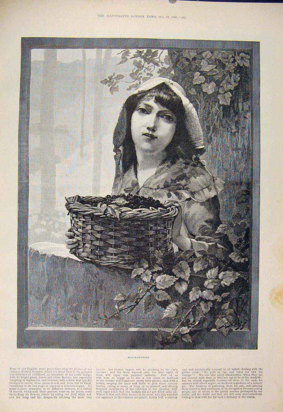 Print Blackberries Girl Lady Basket Fruit Fine Art 1885 65Maa1 Old Original