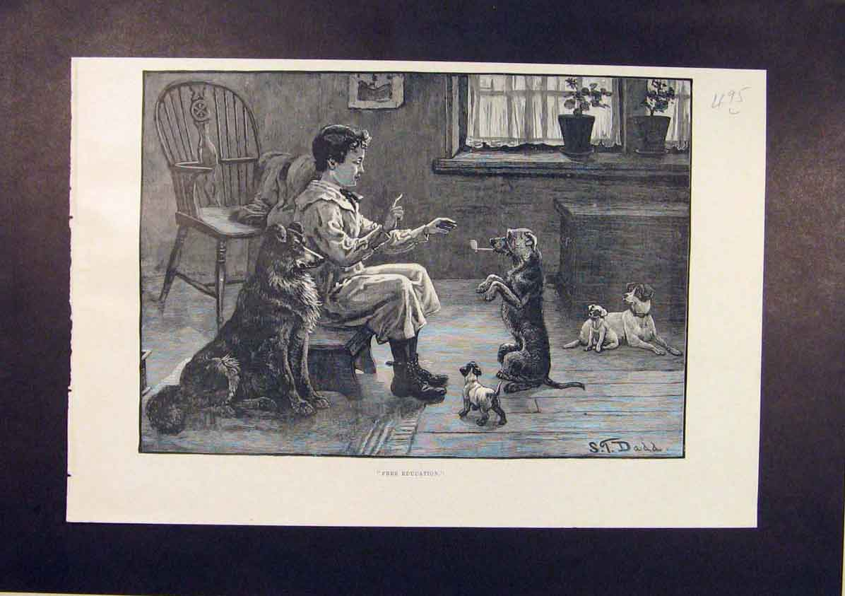 Print Free Education Child Dog Dogs Dadd Puppy 1885 95Lmaa1 Old Original