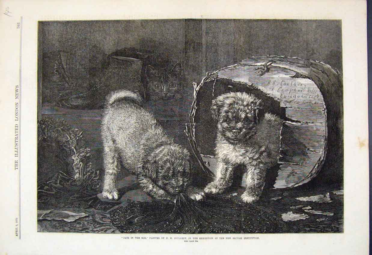 [Print 1870 Jack Box Dogs Cat Playing Couldery Fine Art 140Amar Old Original]