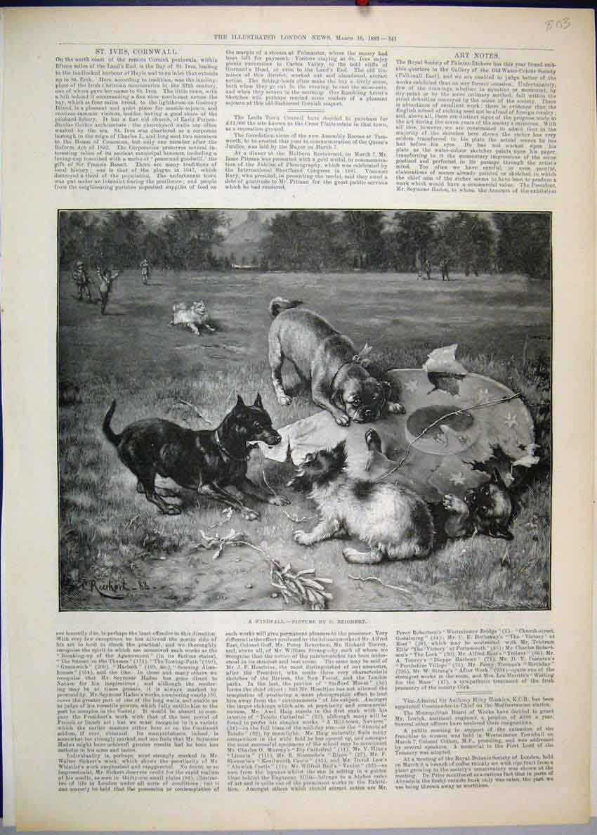 [Print 1889 Dogs Playing Children Country Park 03Mar1 Old Original]