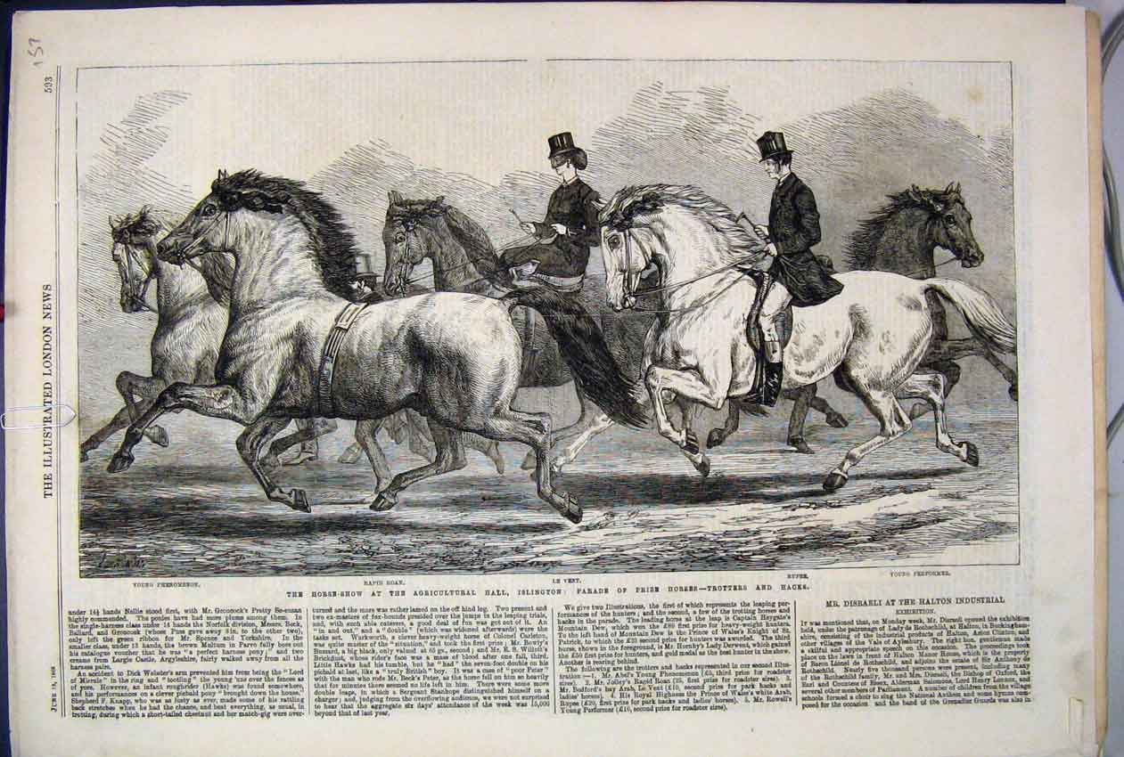 [Print 1868 Horse Show Agricultural Hall Islington Trotters 57Mar1 Old Original]