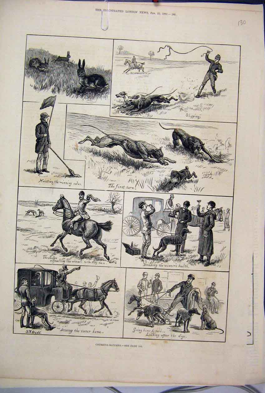 [Print 1882 Coursing Matches Dogs Horse Carriage Hare 30Mar1 Old Original]