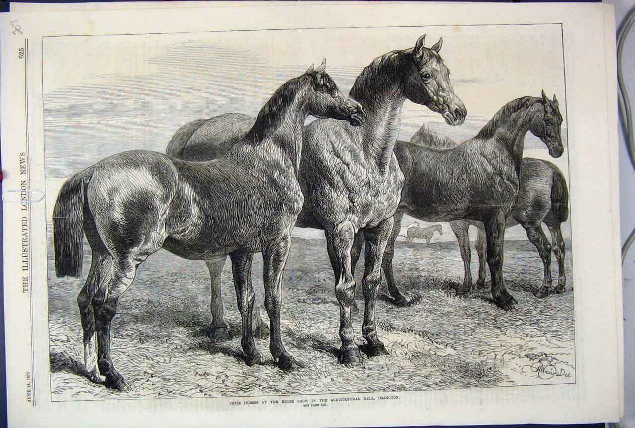 [Print 1870 Prize Horses Show Agricultural Hall Islington 07Mar1 Old Original]