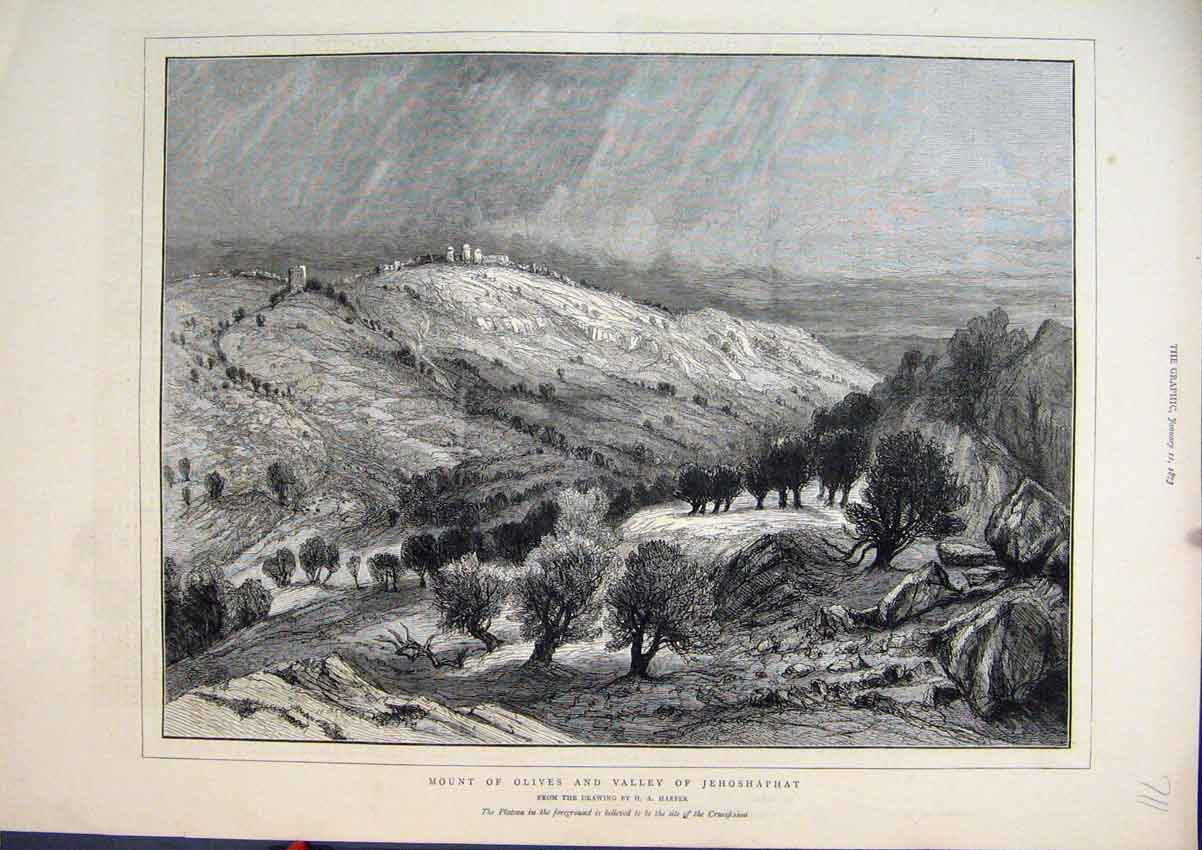 Print Mount Olives Valley Jehoshaphat 1873 Country Scene Tree 11Mar1 Old Original