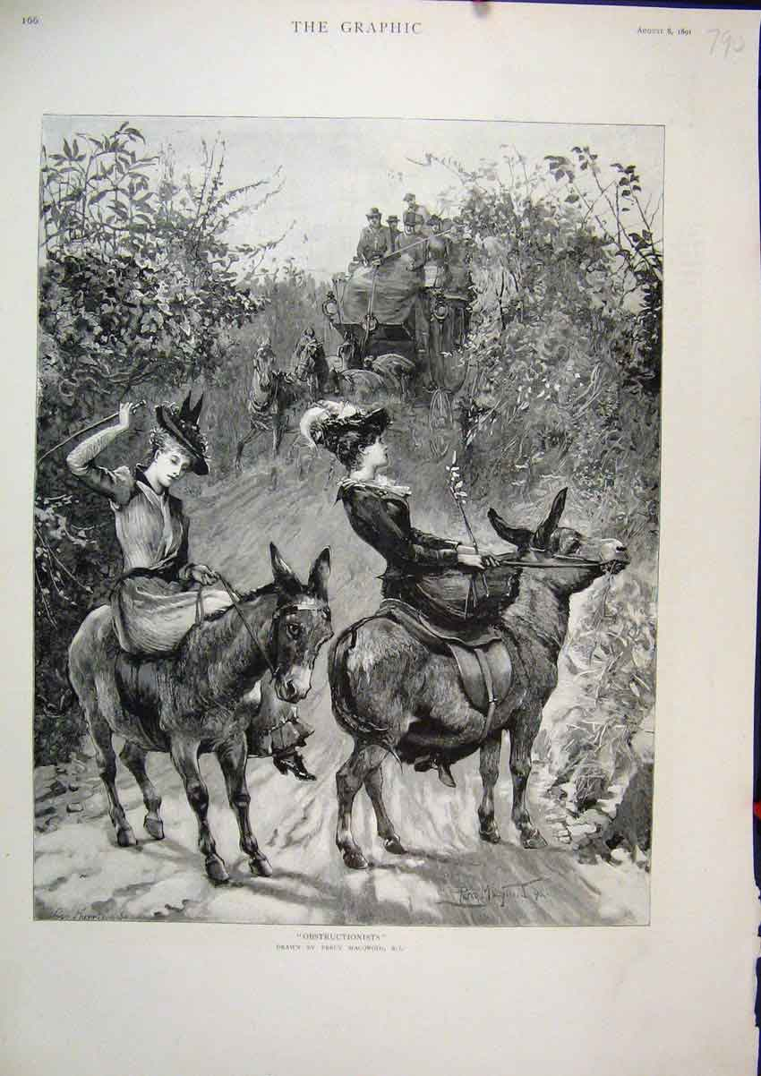 Print 1891 Women Donkey Horse Carriage Country Scene 90Mar1 Old Original