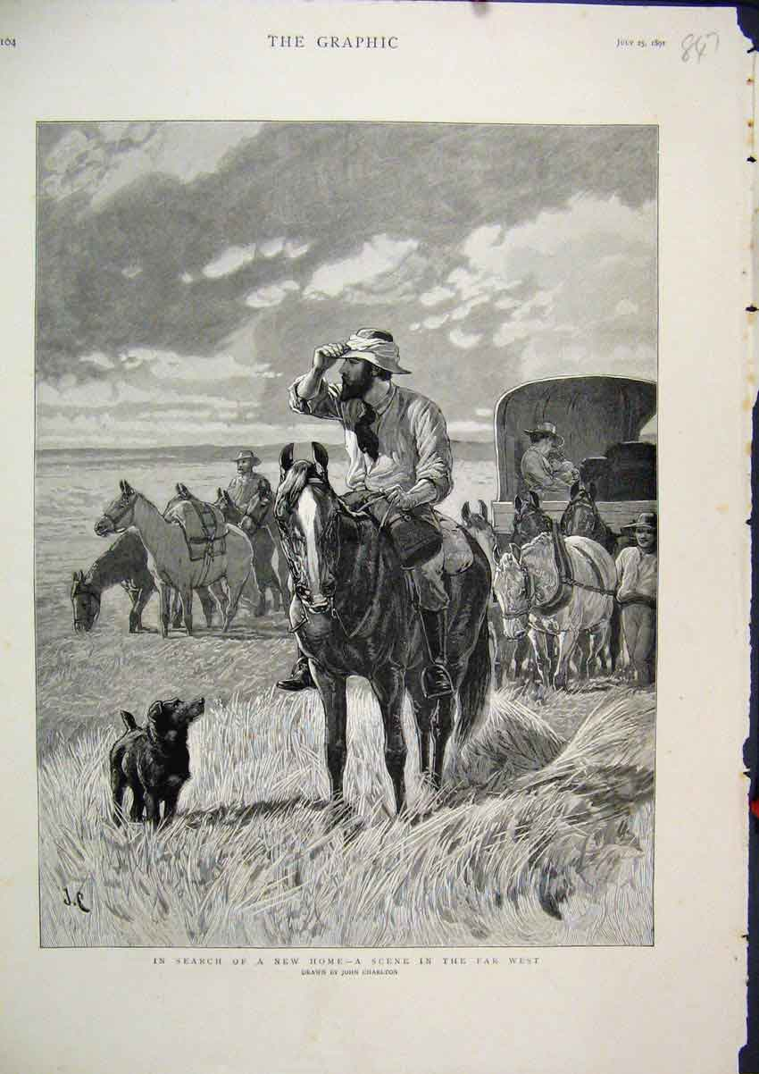 Print 1891 Searching New Home Scene Far West Horses Dog 47Mar1 Old Original