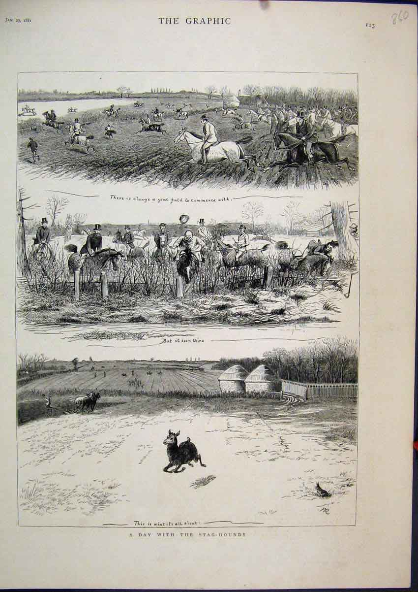 Print 1881 Stag Hounds Horses Field Deer Running Country 60Mar1 Old Original