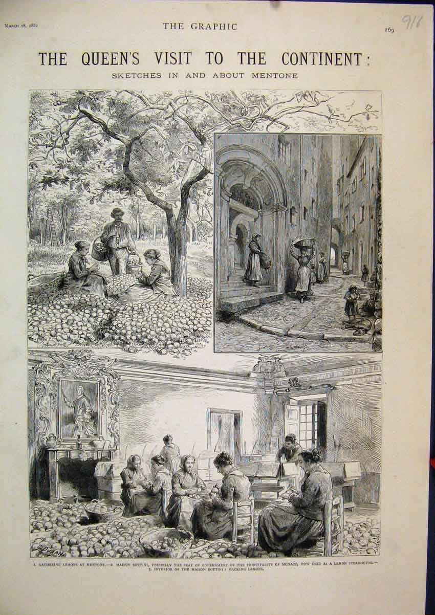 Print 1882 Queens Visit Mentone Lemons Maison Bottini Fruit 18Mar1 Old Original