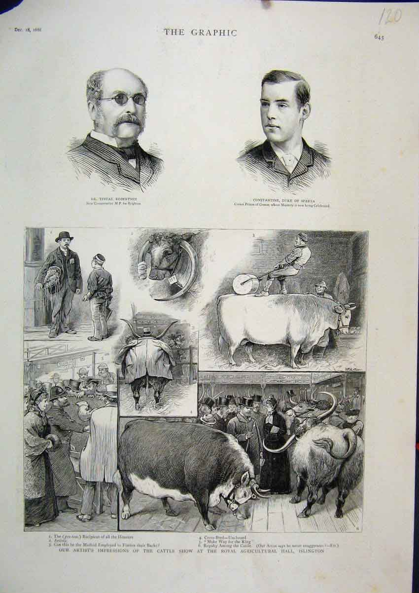 Print 1886 Cattle Show Agricultural Show Islington Tindal 20Mar1 Old Original