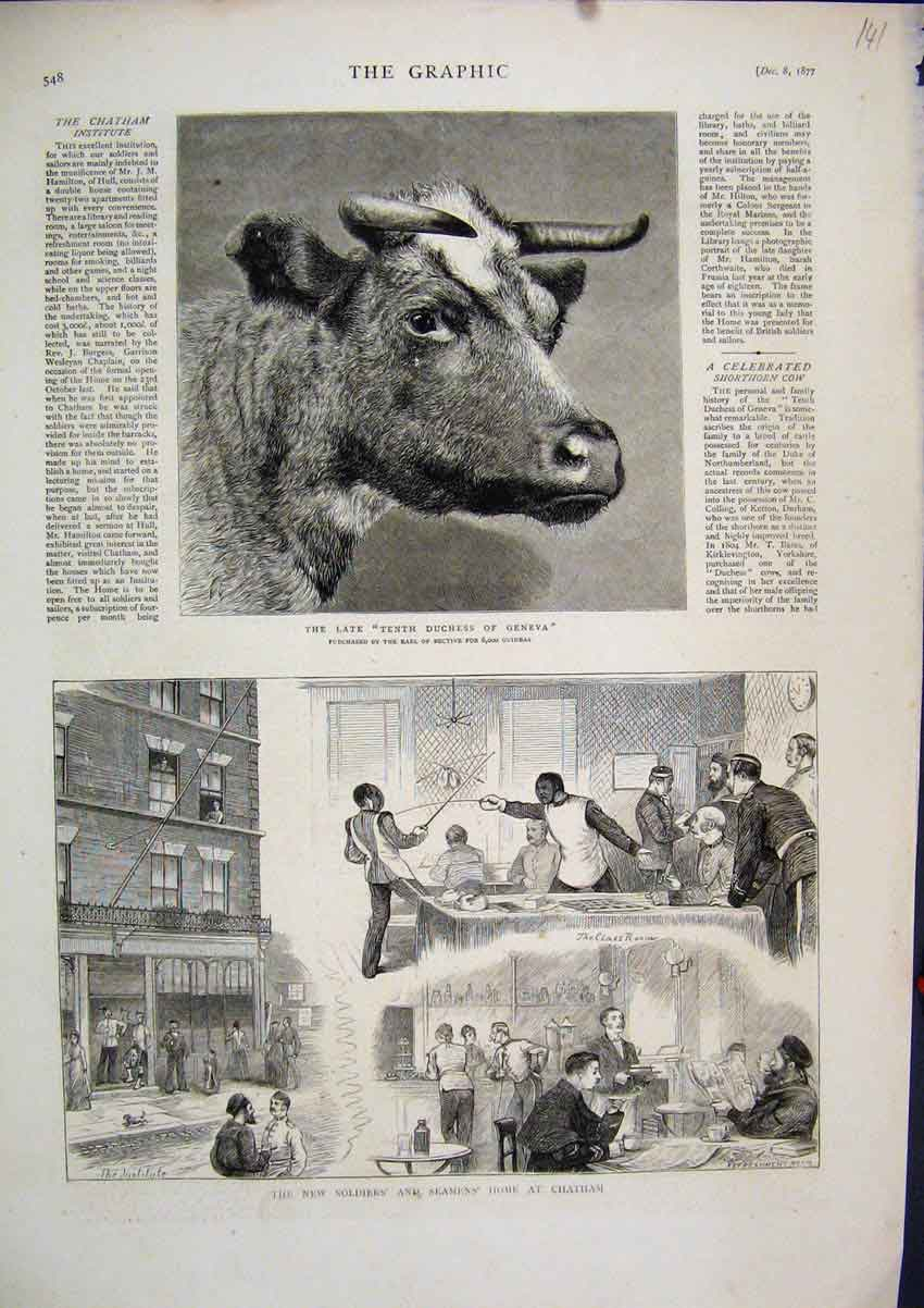 Print New Soldiers Seamens Home Chatham 1877 Duchess Geneva 41Mar1 Old Original