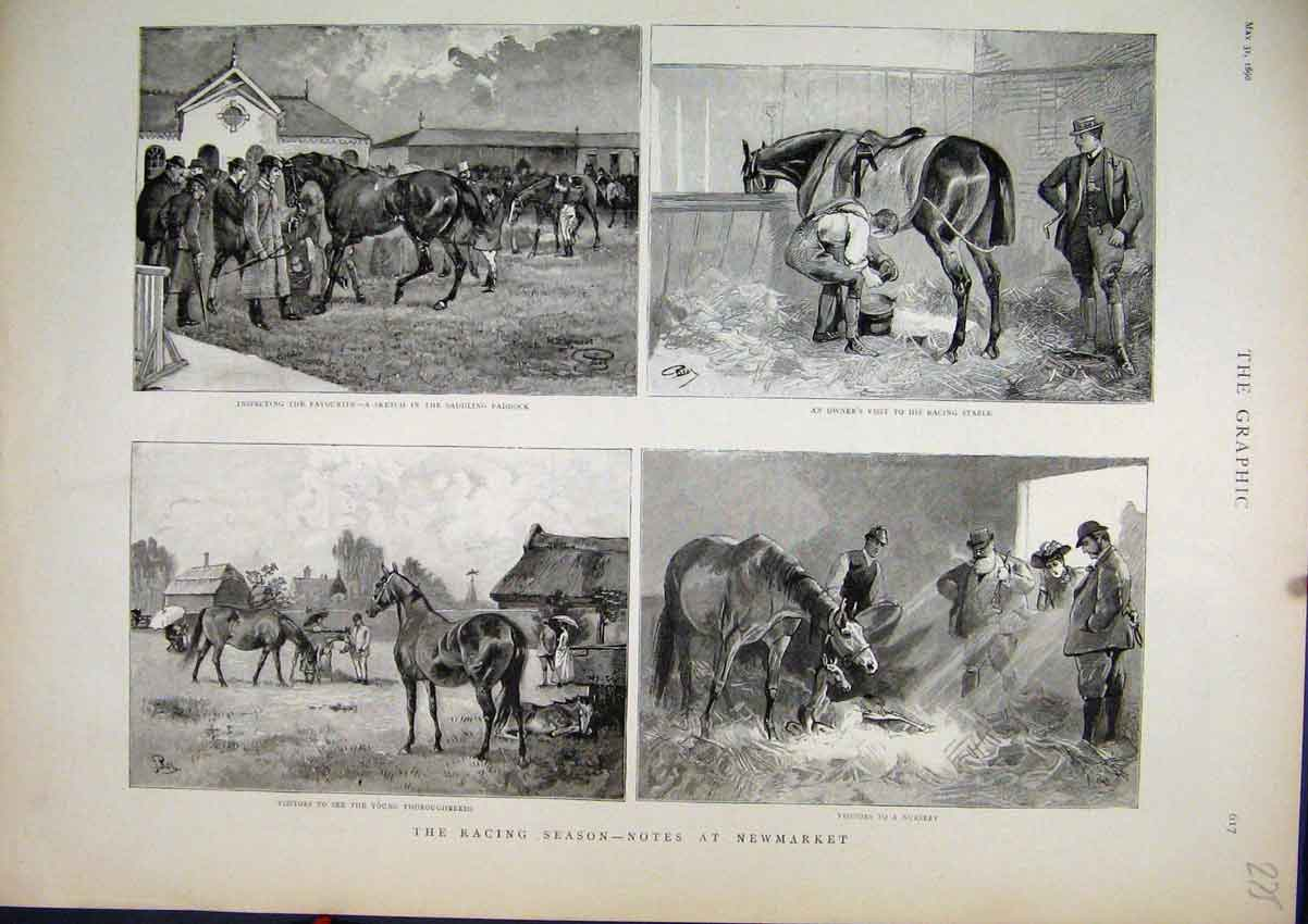 Print 1890 Horse Racing Newmarket Nursery Foal Stable Sketch 75Mar1 Old Original