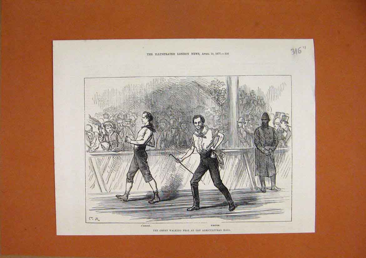 Print 1877 Great Walking Feat Agricultural Hall Weston Oleary 16Umar1 Old Original