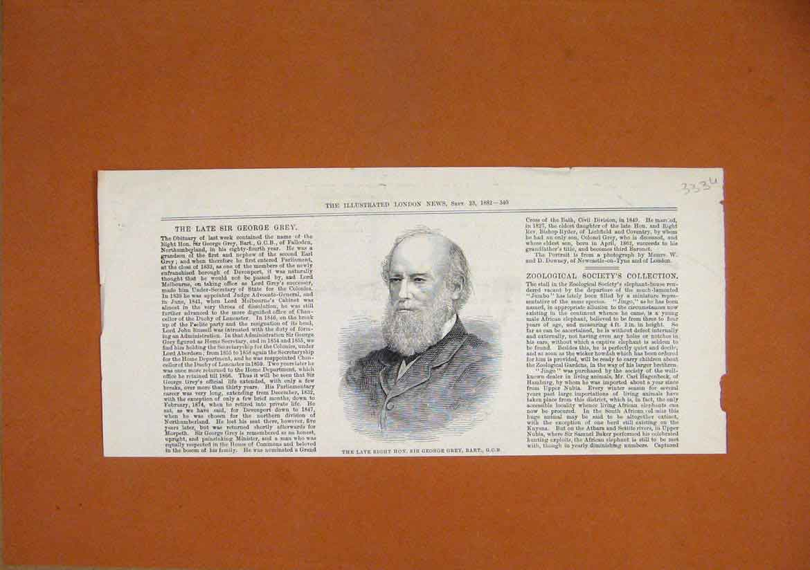 Print 1882 Portrait Right Hon. Sir George Grey Bart 33Umar1 Old Original