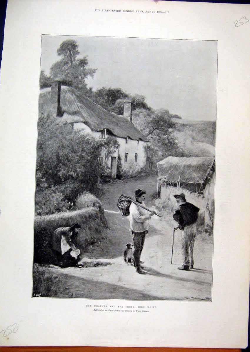 Print Country Village Scene 1895 Crops Farmers Woman Dog 53Mar1 Old Original