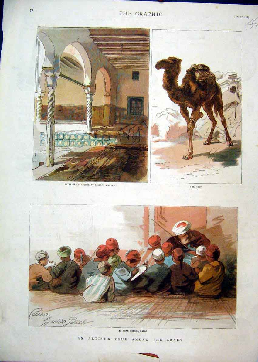 Print 1885 Colour Arabs Camel Mosque Casbah Algiers 55Mar1 Old Original