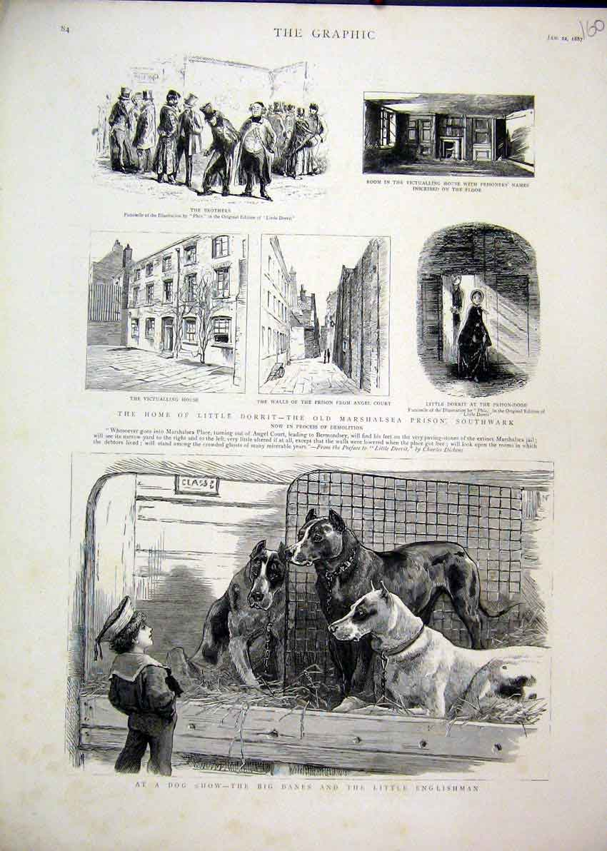 Print 1887 Dog Show Danes Dorrit Marshalsea Prison Angel 60Mar1 Old Original