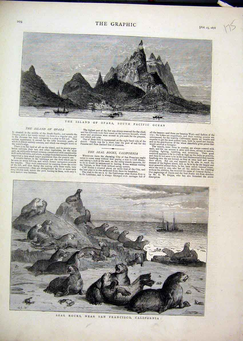 Print 1878 Opara Island Seal Rocks San Fransisco California 75Mar1 Old Original