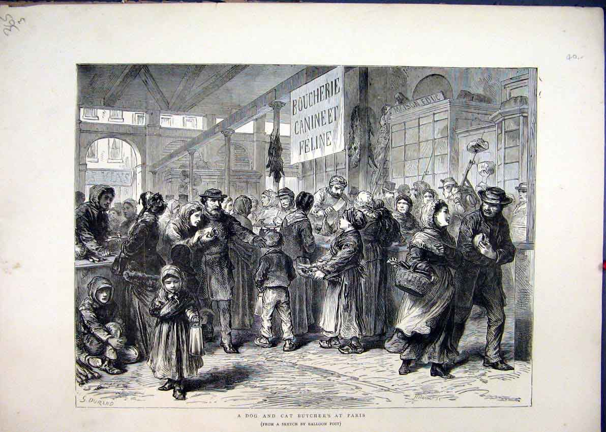 [Print Dog Cat Butcher Paris 1871 France People Buying 65Mar1 Old Original]
