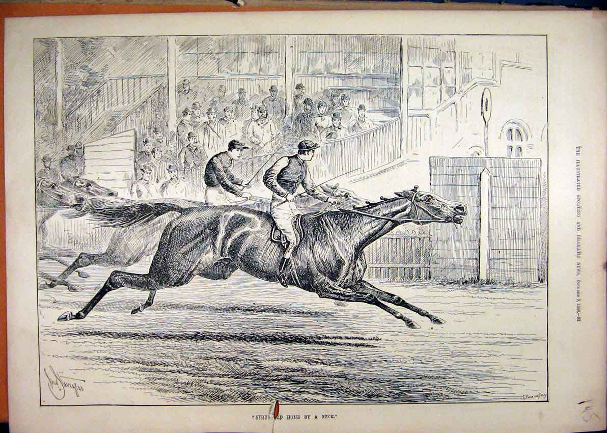 Print Horse Racing Close Finish 1886 Winner Neck 45Mar1 Old Original