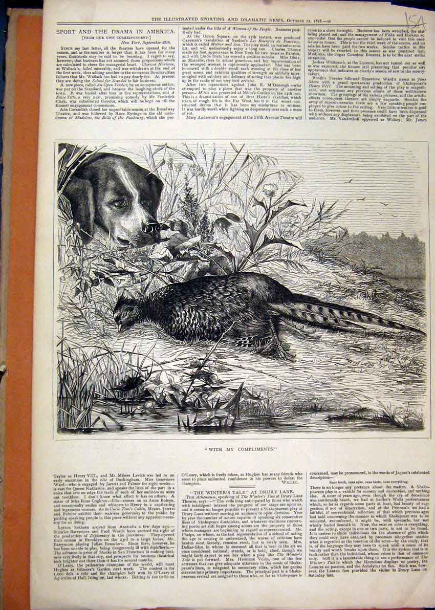 Print Dog Dead Grouse River 1878 Country Scene Hunting 54Mar1 Old Original
