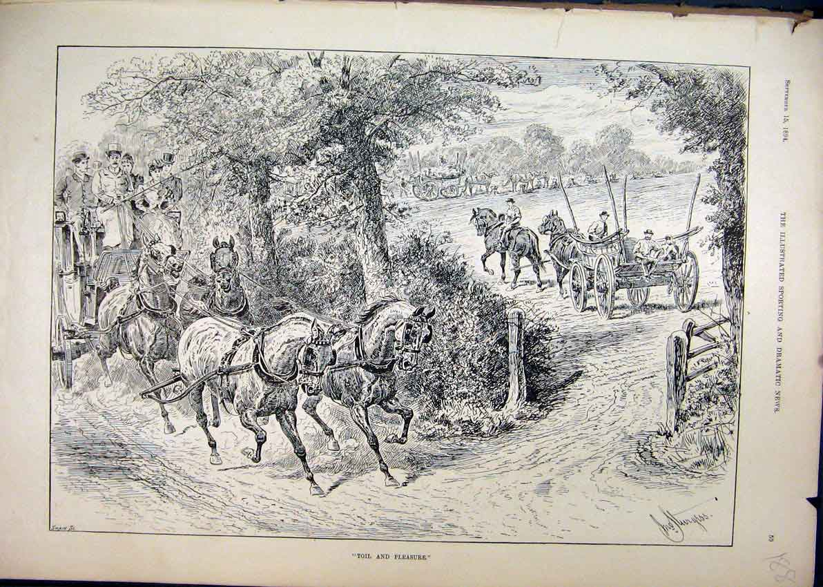 Print 1894 Horses Carriage Country Field Sketch 88Mar1 Old Original