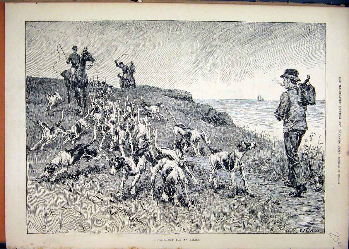 Print 1883 Dogs Hounds Horses Exercising Sea Coast 04Mar1 Old Original